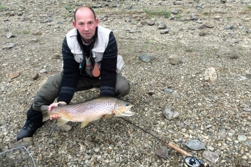 A very large brown trout